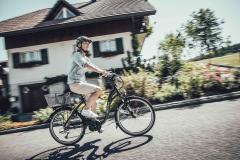 E-Bikes Lady