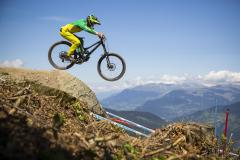 Freeride / Downhill